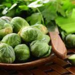 Польза и вред брюссельской капусты для здоровья человека, противопоказания