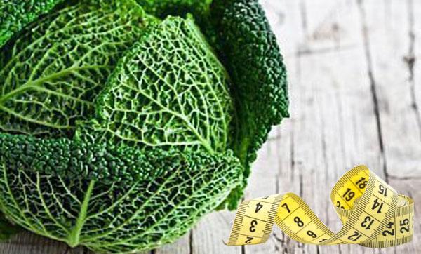 савойская капуста для диеты