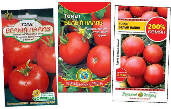 семена томата белый налив