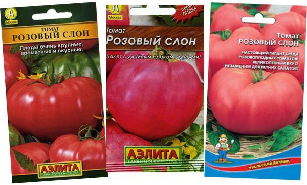 семена томата розовый слон