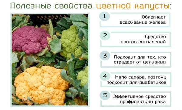 свойства цветной капусты