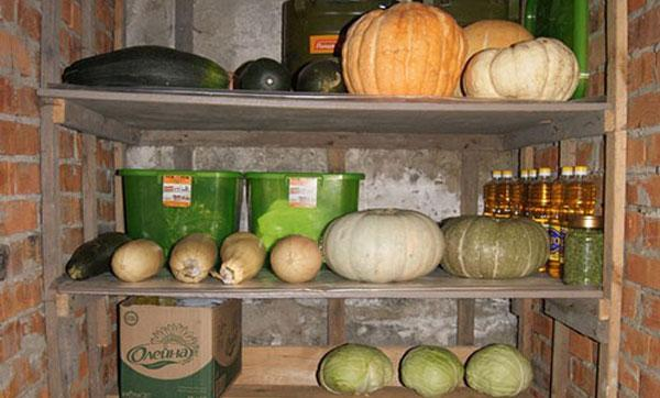 хранение кабачков в подвале