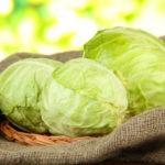 Как правильно хранить капусту в погребе и домашних условиях: способы сохранить ее свежей