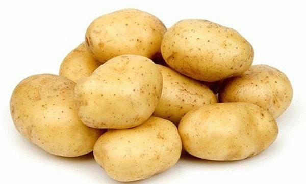 сорт картофеля Винета