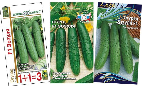 семена огурцов Зозуля F1