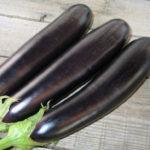 Характеристика и описание гибрида баклажана Валентина F1, выращивание и уход
