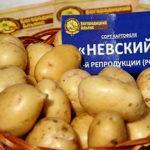 Характеристика и описание сорта картофеля Невский, выращивание и уход