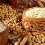 Польза и вред для здоровья человека сои, противопоказания к употреблению