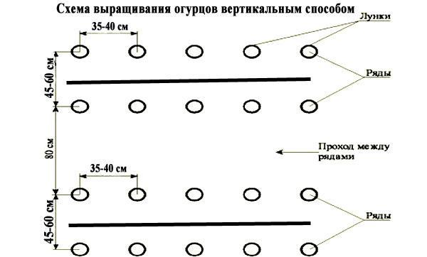 вертикальный способ выращивания